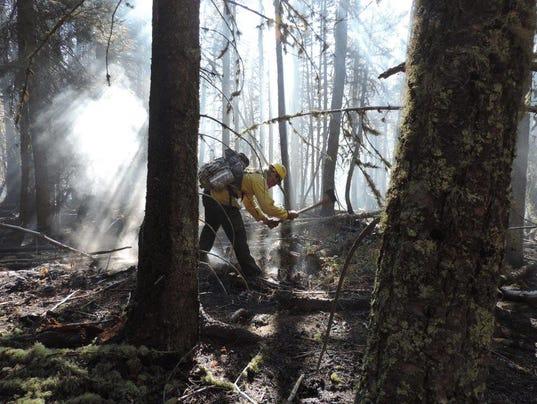 Timber Creek Fire