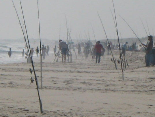 Governor 39 s cup surf fishing contest is sunday at ibsp for Island beach state park fishing