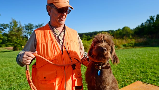 The Keystone Chapter of the North American Versatile Hunting Dog Association met at the York Springs game lands recently for a training day. Jeffrey Aston from Columbia worked with his Pudelpointer named Deegan.