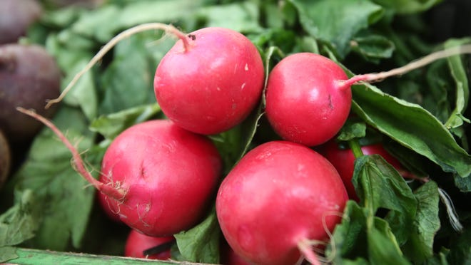 Radishes are among the first local vegetables to appear in spring.