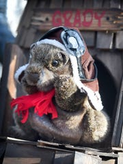 Mt Gretna Grady, Lebanon's newest groundhog prognosticator,