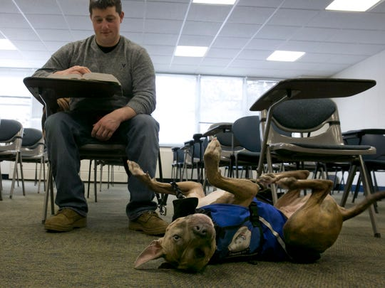 Former U.S. Marine Joe Bonfiglio, 24, and his pit bull assistance dog Zen, sit in a classroom on the campus of Mercy College, in Dobbs Ferry, N.Y.