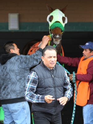 Trainer Miguel Hernandez, foreground, heads to meet his jockey and horse owner after helping prepare Just Mary for her race Sunday at Sunland Park.