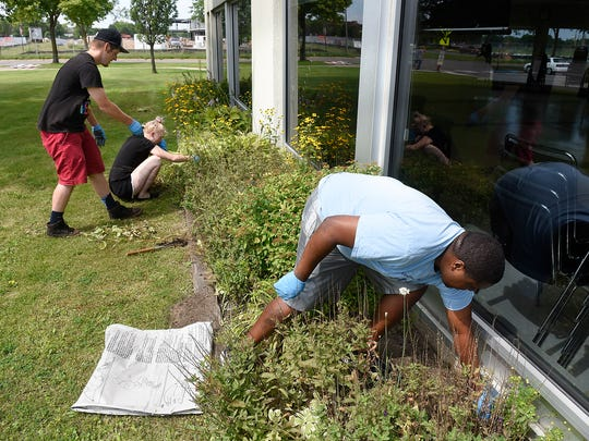 Cortez Riley pulls weeds with some friends at the Whitney Senior Center on Tuesday in St. Cloud. Riley is spending the week of his 28th birthday volunteering in the area.