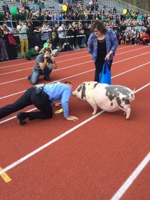 Assistant Principal Ryan MacNaughton enjoys participating in the Kiss the Pig Contest.