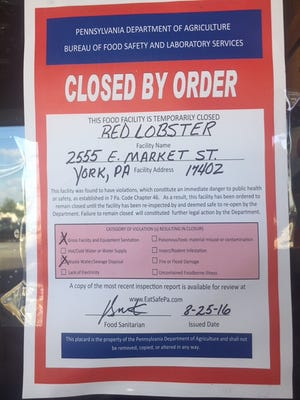 The state temporarily closed Red Lobster Thursday, after health inspectors found that it had allowed cooks to prepare food while plumbers worked to repair a broken pipe leaking sewage into the kitchen.