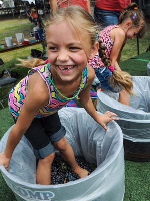 The annual Harvest Wine Festival hosts grape-stomping competitions for participants of all ages.