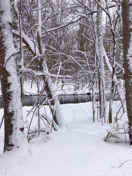 636222476797142928-Ridgewood-snow-duckpondlv-2.jpg