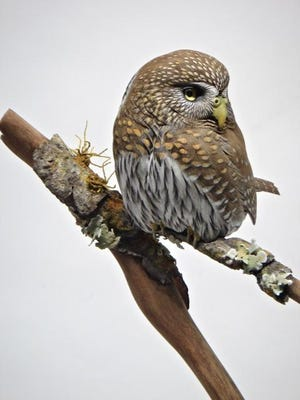 """""""Pygmy Owl,"""" tupelo wood carving with oil paint by Gary Eigenberger, part of the Wildlife Biennial XVIII exhibit running from June 3 to July 18 at the Miller Art Museum in Sturgeon Bay."""