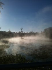 The mysterious waters of the Wakulla River.