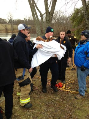 Uno is carried after being rescued Friday from an icy pond at Carousel Park in Pike Creek.