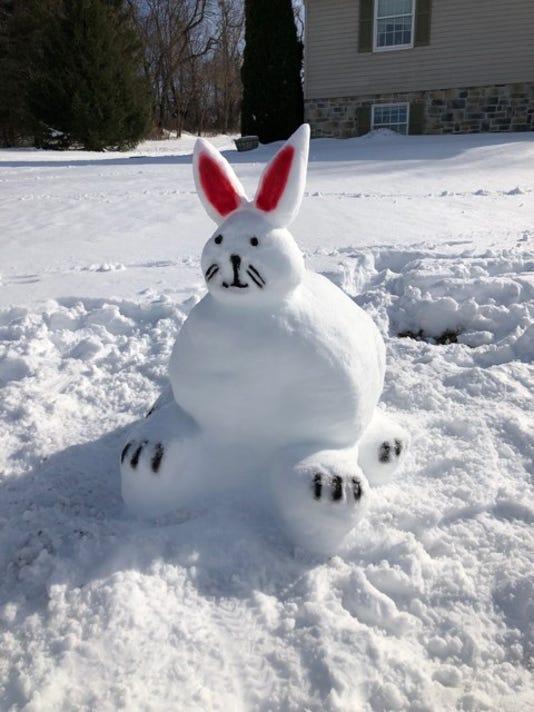 snow-bunny.jpg