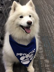 Chilly, the mascot for the Farmington Hills Police