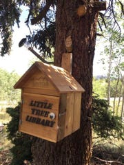 "A ""little tree library"" made in a grove of trees at our house."