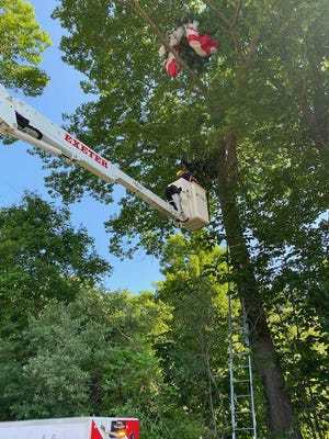 Sunday morning, an unidentified paraglider was rescued from a tree in Sanders Field on Post Road in Greenland.