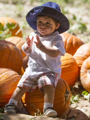 10/1-31: Schnepf Farms Pumpkin and Chili Party | Fall