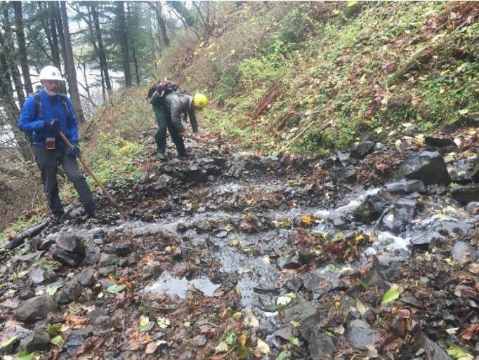Fire damage to the Return Trail near Multnomah Falls