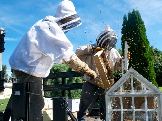Beekeepers at work at From the Garden in Freehold.