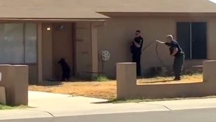 A video posted on YouTube appeared to show a Peoria police officer kicking and whipping a police dog outside a house.