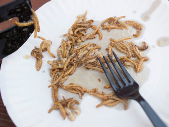 Mealworms fried in sesame oil are served at Hope Farms Wednesday, April 13, 2016. The worms are said to have a flavor of nutty shrimp.