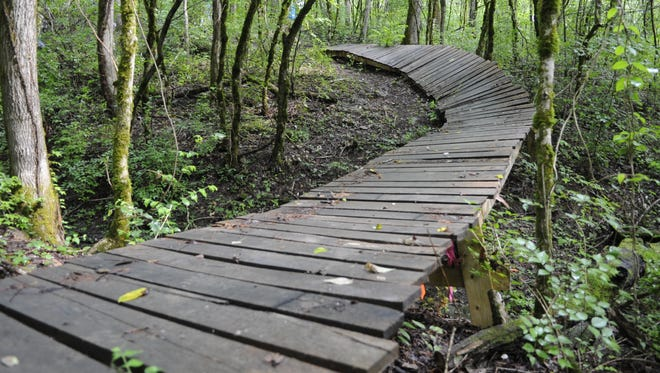 Enjoy a Saturday breakfast at Ijams Nature Center, then walk off the calories on one of the nature center's trails.