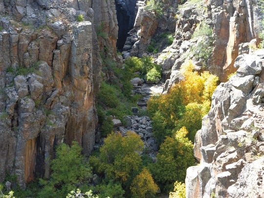 Steep walls near Sycamore Falls are popular with climbers.