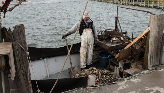 Waterman Tony Thornes waits to offload oysters from his boat as a crew prepares special equipment to help him.