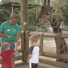 There are more changes in the works for the Knoxville Zoo, this time outside the gates.