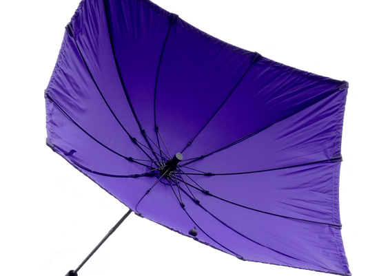 large-chimella