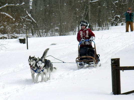 """Teanna Byerts of Dover writes, """"Our own Iditarod right here at Pinchot: my cousin's kids get their first taste of mushing. Happy dogs love to run... so do kids."""""""