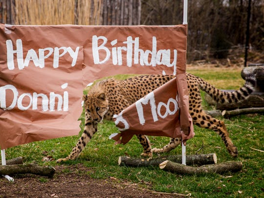 Donni tears Moose's name of their shared first birthday