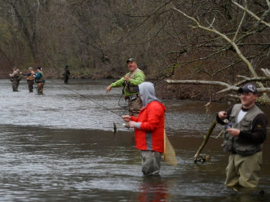 Anglers wade in the Yellow Breeches Creek on opening day of trout season in Carroll Township.