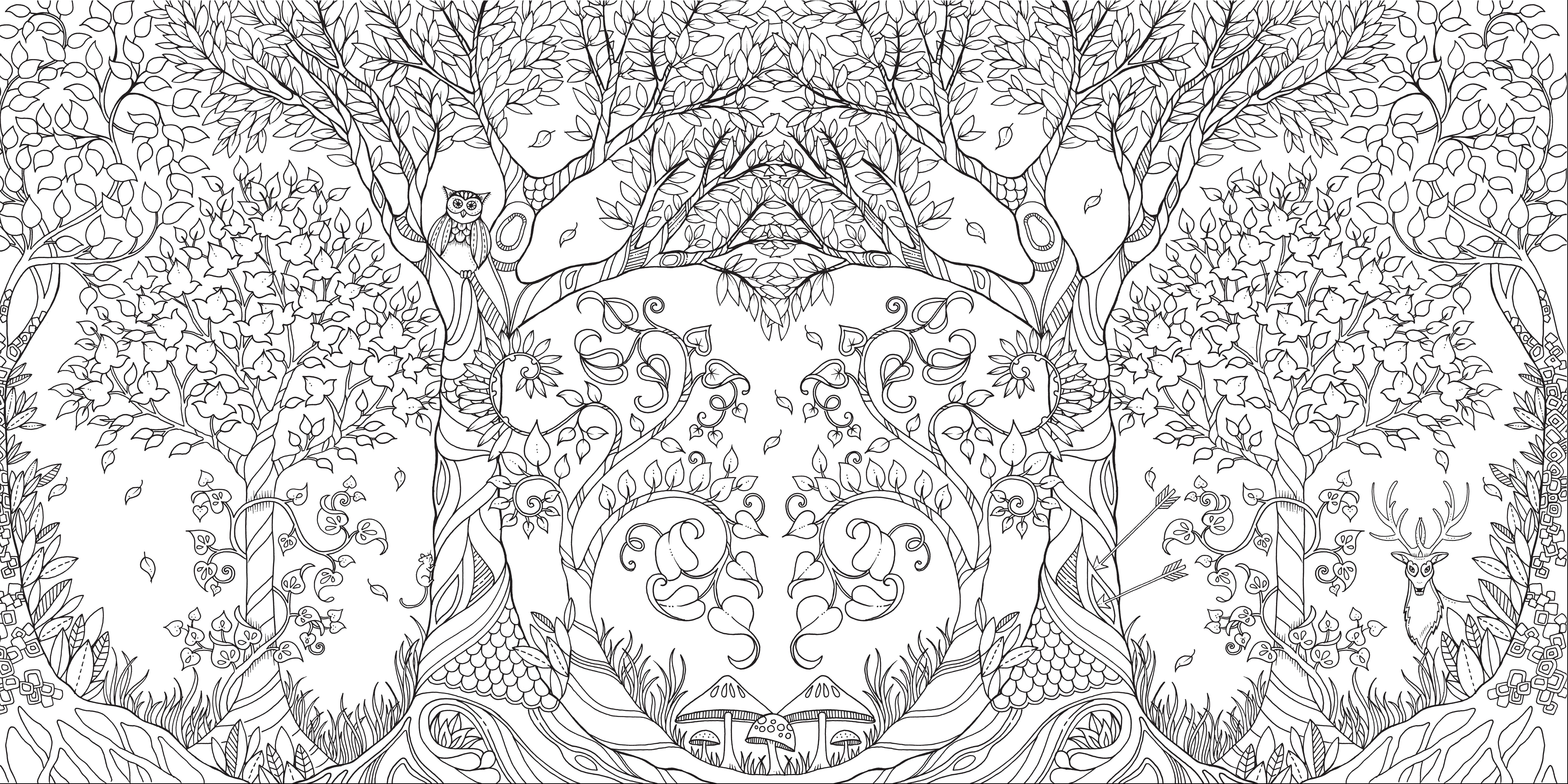 Whimsical coloring books for grownups are a hit
