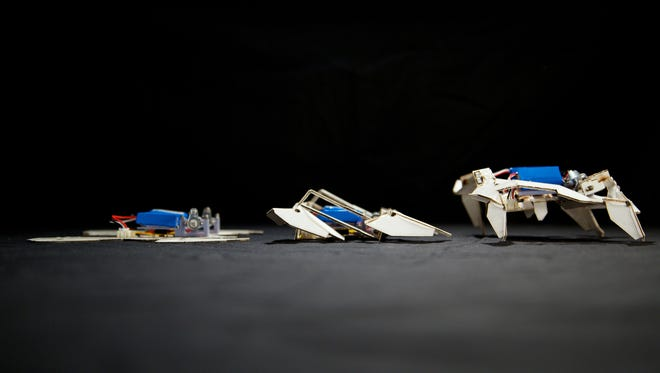 Researchers have created a self-folding crawling robot, seen here in three stages.