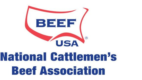 NCBA and PLC logos