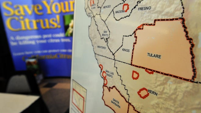 An Asian Citrus Psyllid Cooperative Program map marking Tulare County in orange indicating the State Quarantine for the Asian Citrus Psyllid since Dec. 24, 2014 from the US Department of Agriculture at an exhibiter's education booth during the 2015 Citrus Showcase Thursday at the Visalia Convention Center in this file photo.