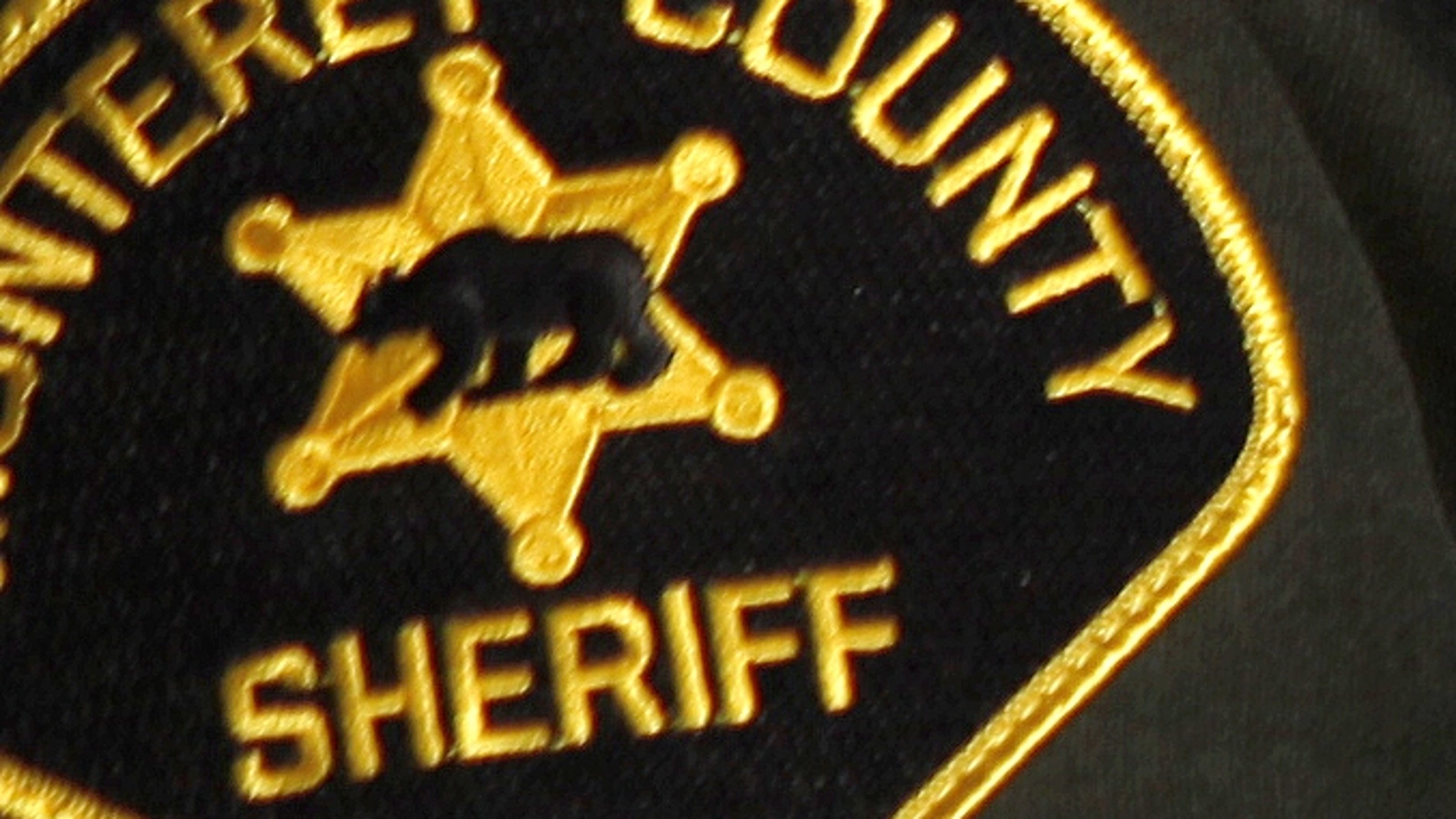 Sheriff's Log: Blunt force trauma to head - The Salinas Californian