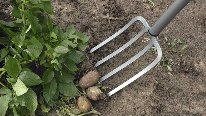 Garden spades and forks need sharp edges to do the digging job properly.
