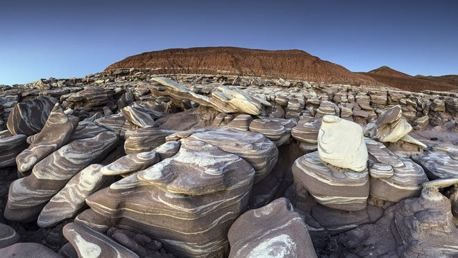 The landscape of the Petrified Forest may be stark and barren but it is never dull.