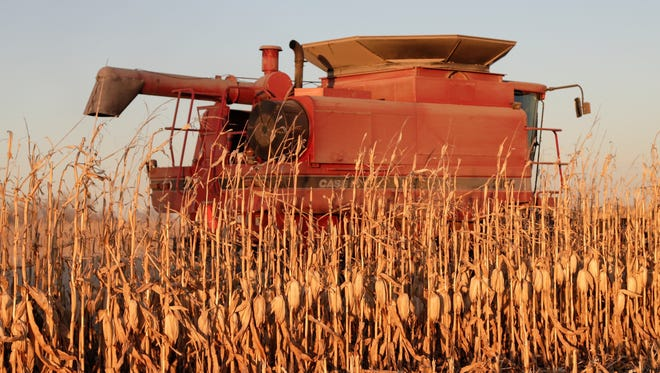 Grain prices and crop demand will be similar to last year baring a major weather event or foreign market change.