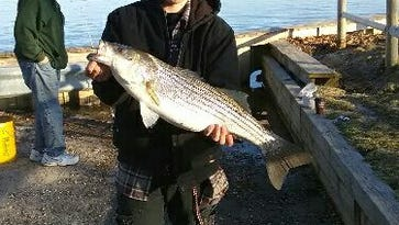 Dougie Pombo with an 11-pound, 31-inch keeper striped bass from Toms River.