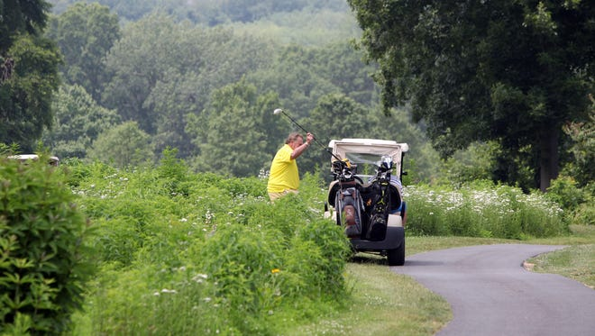 A golfer puts his club in the cart near a less maintained area at the Rockland Country Club June 11, 2015 in Sparkill. The Rockland Country Club has been creating significant garden pockets of pollinator-friendly native plants throughout the edges of the course.