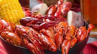 The Fredericksburg Crawfish Festival returns to Texas, May 25-27.
