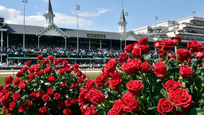 A view of the roses in the winners circle before the 141st Kentucky Derby at Churchill Downs.