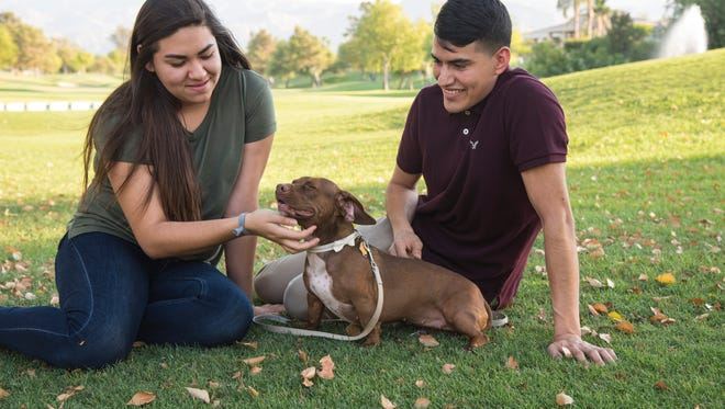 Tootsie, with her new owners Monserrad Floriano and Christian Silva of Palm Springs. Tootise was adopted through the Dog Samaritans Adoption Project, a partnership between the Westin Mission Hills Golf Resort & Spa and Animal Samaritans shelter in Thousand Palms.