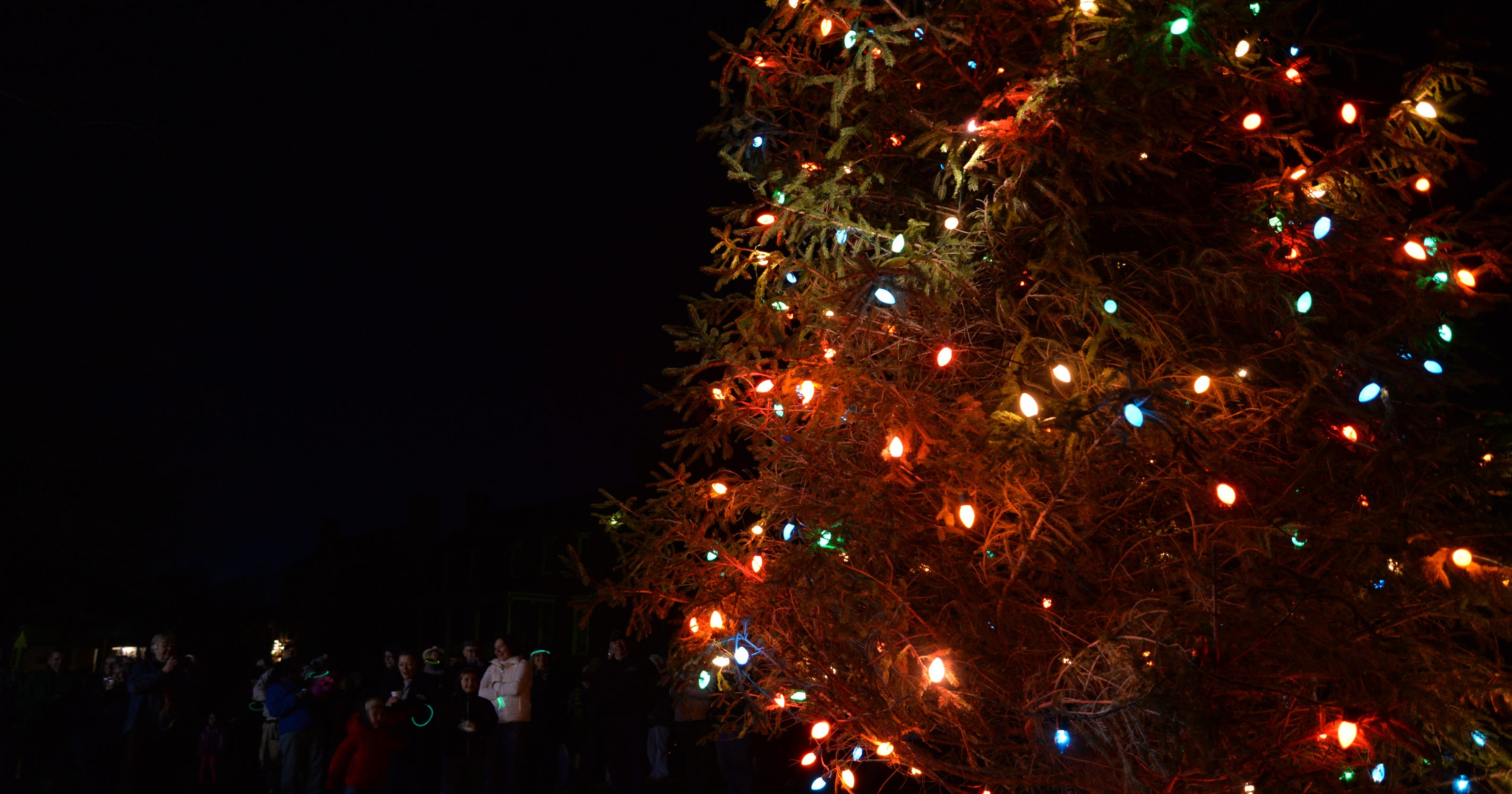 Best Christmas Tree Lights.Where Are The Best Christmas Lights