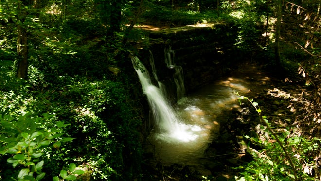 "A waterfall inside a natural area of approximately 70 acres near Madison Street. The Council just voted yes to buy the land to be used as an ""Urban Wilderness."""