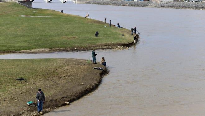Fishermen catch walleye in the Sandusky River near downtown Fremont on Thursday afternoon.