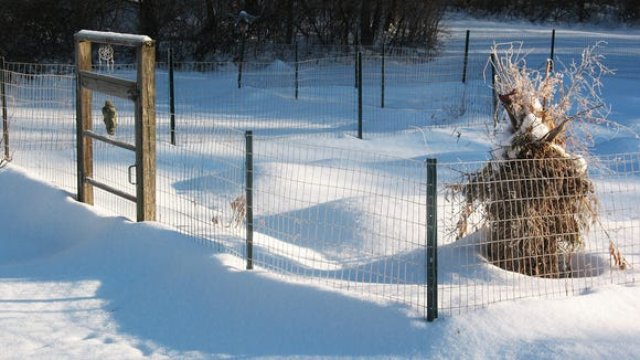 Winter brought plenty of snow, which serves as an insulator, for the garden.