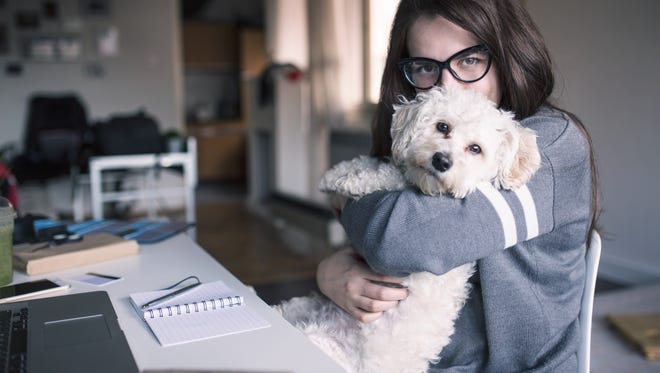 If you're a small business owner, consider getting a dog. They're great business companions.